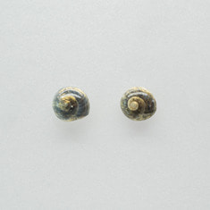 Dark storm clam earring